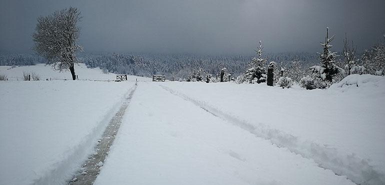 Zimowy dojazd